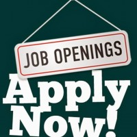 Learning Support Assistant Level 2 Vacancy