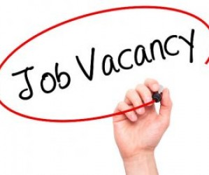LSA (Teaching Assistant) Level 2 Vacancy